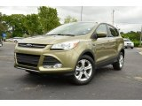 2013 Ginger Ale Metallic Ford Escape SE 2.0L EcoBoost #80480923