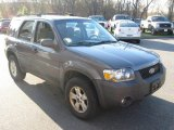 2006 Dark Shadow Grey Metallic Ford Escape XLT V6 4WD #80481074