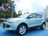 2013 Frosted Glass Metallic Ford Escape SE 2.0L EcoBoost #80480501