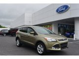 2013 Ginger Ale Metallic Ford Escape SE 1.6L EcoBoost #80480595
