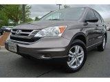 2010 Urban Titanium Metallic Honda CR-V EX AWD #80539230