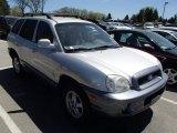 2004 Pewter Hyundai Santa Fe GLS 4WD #80539400