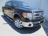 2013 Kodiak Brown Metallic Ford F150 XLT SuperCrew #80593163