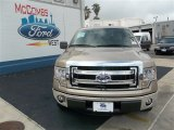 2013 Pale Adobe Metallic Ford F150 XLT SuperCrew #80592789