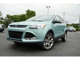 2013 Frosted Glass Metallic Ford Escape SEL 2.0L EcoBoost 4WD #80593306