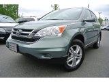 2010 Opal Sage Metallic Honda CR-V EX-L #80672121