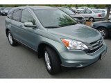 2010 Honda CR-V Opal Sage Metallic