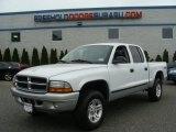 2004 Bright White Dodge Dakota SLT Quad Cab 4x4 #80677951