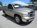 2004 Dodge Ram 1500 Light Almond Pearl