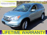 2011 Glacier Blue Metallic Honda CR-V EX-L 4WD #80723023