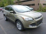 2013 Ginger Ale Metallic Ford Escape SE 1.6L EcoBoost 4WD #80723096