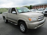 2005 Toyota Tundra SR5 Access Cab 4x4 Front 3/4 View