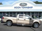 2013 Pale Adobe Metallic Ford F150 XLT SuperCrew 4x4 #80785254