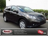 2013 Kona Coffee Metallic Honda CR-V EX-L #80784919