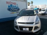 2013 Ingot Silver Metallic Ford Escape SE 2.0L EcoBoost #80837870