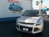 2013 Ingot Silver Metallic Ford Escape SE 1.6L EcoBoost #80837865