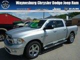 2010 Bright Silver Metallic Dodge Ram 1500 Big Horn Crew Cab 4x4 #80838060
