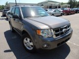 2011 Sterling Grey Metallic Ford Escape XLT #80838163