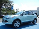 2013 Frosted Glass Metallic Ford Escape SEL 1.6L EcoBoost #80894975