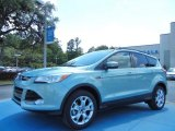 2013 Frosted Glass Metallic Ford Escape SEL 1.6L EcoBoost #80894974
