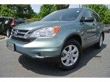 2011 Opal Sage Metallic Honda CR-V SE #80948480
