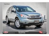 2011 Opal Sage Metallic Honda CR-V SE #81011094