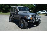 Jeep Wrangler 1991 Data, Info and Specs