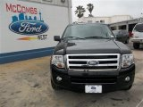 2013 Tuxedo Black Ford Expedition XLT #81011159