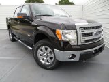 2013 Kodiak Brown Metallic Ford F150 XLT SuperCrew 4x4 #81127794