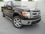 2013 Kodiak Brown Metallic Ford F150 XLT SuperCrew 4x4 #81127790