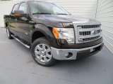 2013 Kodiak Brown Metallic Ford F150 XLT SuperCrew #81127789