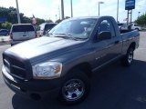 2006 Mineral Gray Metallic Dodge Ram 1500 ST Regular Cab #81171484