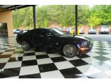 2006 Vista Blue Metallic Ford Mustang V6 Premium Coupe #81171483