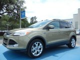 2013 Ginger Ale Metallic Ford Escape SEL 2.0L EcoBoost #81170823
