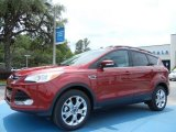 2013 Ruby Red Metallic Ford Escape SEL 1.6L EcoBoost #81170821