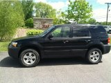 2006 Black Ford Escape XLT V6 4WD #81171037
