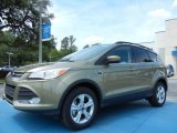 2013 Ginger Ale Metallic Ford Escape SE 2.0L EcoBoost #81170815