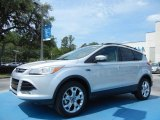 2013 Ingot Silver Metallic Ford Escape SEL 1.6L EcoBoost #81170814