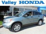 2010 Opal Sage Metallic Honda CR-V EX AWD #81170685