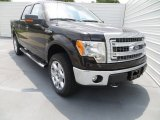 2013 Kodiak Brown Metallic Ford F150 XLT SuperCrew 4x4 #81170960