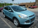 2013 Frosted Glass Metallic Ford Escape SE 1.6L EcoBoost #81225725