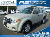 2009 Light Sage Metallic Ford Escape XLS #81288357