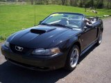 2002 Black Ford Mustang GT Convertible #8119788