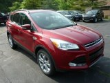 2013 Ruby Red Metallic Ford Escape SEL 2.0L EcoBoost 4WD #81287974