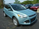 2013 Frosted Glass Metallic Ford Escape SE 1.6L EcoBoost 4WD #81287970