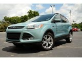 2013 Frosted Glass Metallic Ford Escape SE 2.0L EcoBoost 4WD #81349311