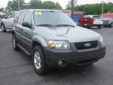 2006 Titanium Green Metallic Ford Escape XLT #81403943
