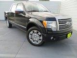 2010 Tuxedo Black Ford F150 Platinum SuperCrew #81403561