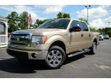 2013 Pale Adobe Metallic Ford F150 XLT SuperCrew #81403750