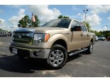 2013 Pale Adobe Metallic Ford F150 XLT SuperCrew 4x4 #81403748